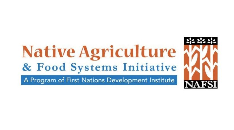 FNDI Native Agriculture and Food Systems Scholarship Program 2019/2020