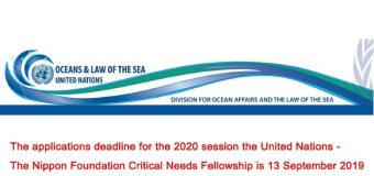 United Nations-The Nippon Foundation Critical Needs Fellowship 2020 (Stipend available)
