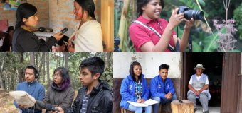 Cultural Survival Indigenous Community Media Youth Fellowship 2020 (up to $2,500 USD)