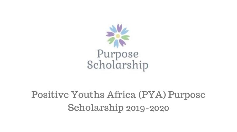 Positive Youths Africa (PYA) Purpose Scholarship 2019/2020 for Refugees and IDPs in Cameroon