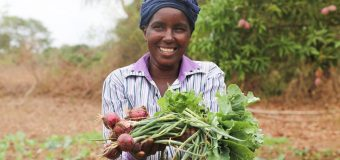 USAID's RISE Challenge 2019 to Address Gender-Based Violence in the Environment
