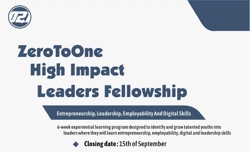 ZeroToOne High Impact Leaders Fellowship 2019