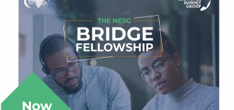 Nigerian Economic Summit Group (NESG) Bridge Fellowship 2019/2020