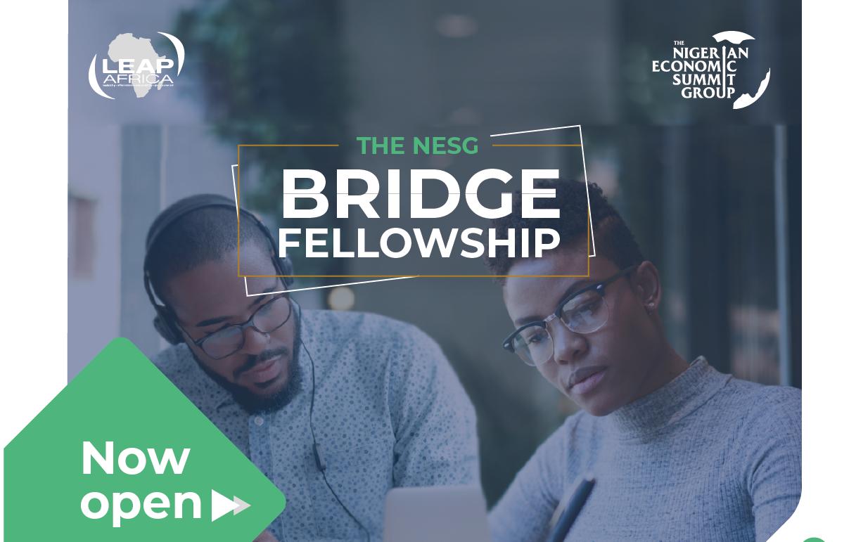 Nigerian Economic Summit Group (NESG) Bridge Fellowship 2019/2020