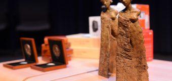 MEDEA Award 2020 for Professionally Produced Education Media