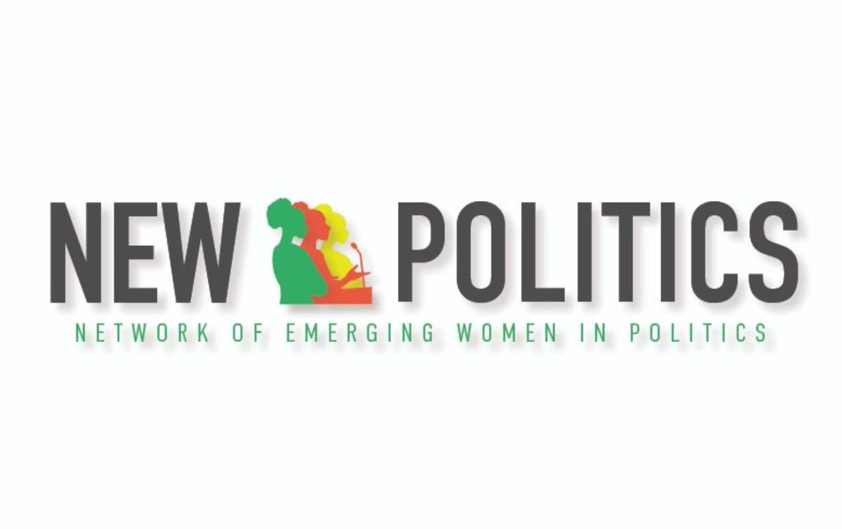 The Network of Emerging Women (NEW) in Politics Program 2020 for Young Women from Africa