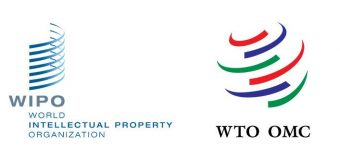 WIPO-WTO Colloquiums 2020 for Intellectual Property Teachers – Geneva, Switzerland (Funding available)