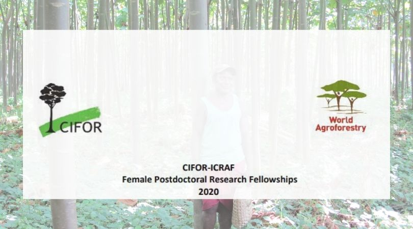CIFOR-ICRAF Female Postdoctoral Research Fellowship Programme 2020 (Funding available)