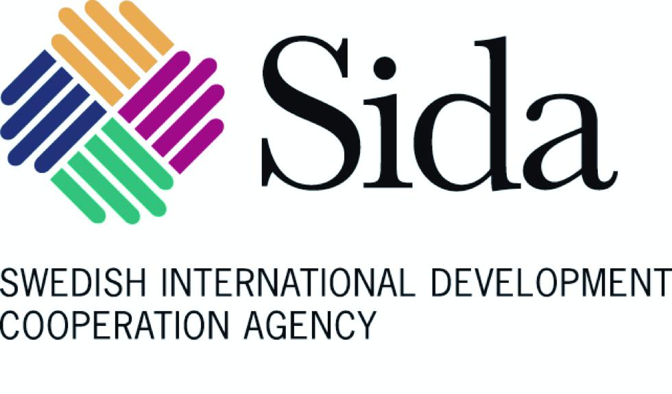 Sida International Training Program on Media Regulation in Africa 2020