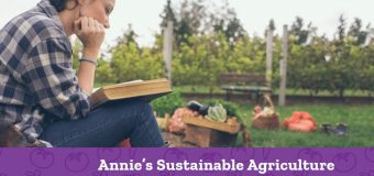 Annie's Sustainable Agriculture Scholarships 2020 for Students in the US