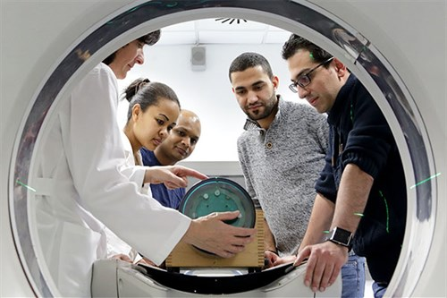 International Centre for Theoritical Physics (ICTP) Master in Medical Physics Programme 2020 (Scholarship available)