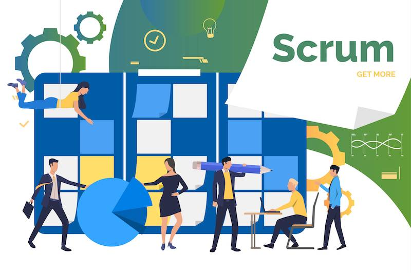 What Roles Are in Scrum?