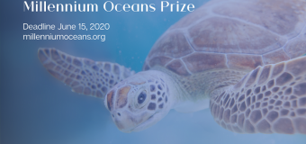 Millennium Oceans Prize 2020 on SDG 14 for Young Leaders (Up to $5,000)