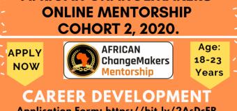 African ChangeMakers Online Mentorship Program 2020 (Cohort 2)
