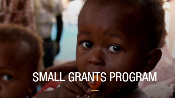 Mérieux Foundation Small Grants Program 2020 (up to  €5,000 Euros)