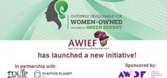 AWIEF Green Energy Startup Incubator 2020 for African Women Entrepreneurs