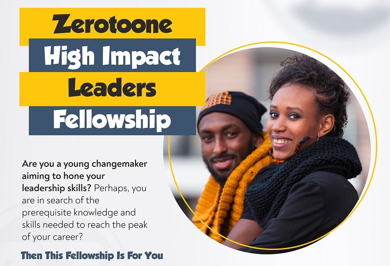 Call for Applications: ZeroToOne High Impact Leaders Fellowship 2020