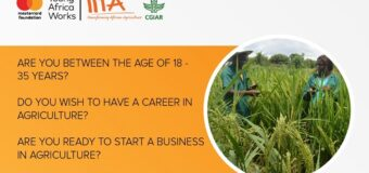International Institute for Tropical Agriculture/Mastercard Foundation Young Africa Works-IITA Project 2020 [Nigerians only]