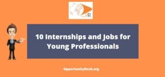 10 Internships and Jobs for Young Professionals