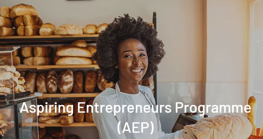 Pan African Women Empowerment Network (PAWEN) Aspiring Entrepreneurs Program 2021