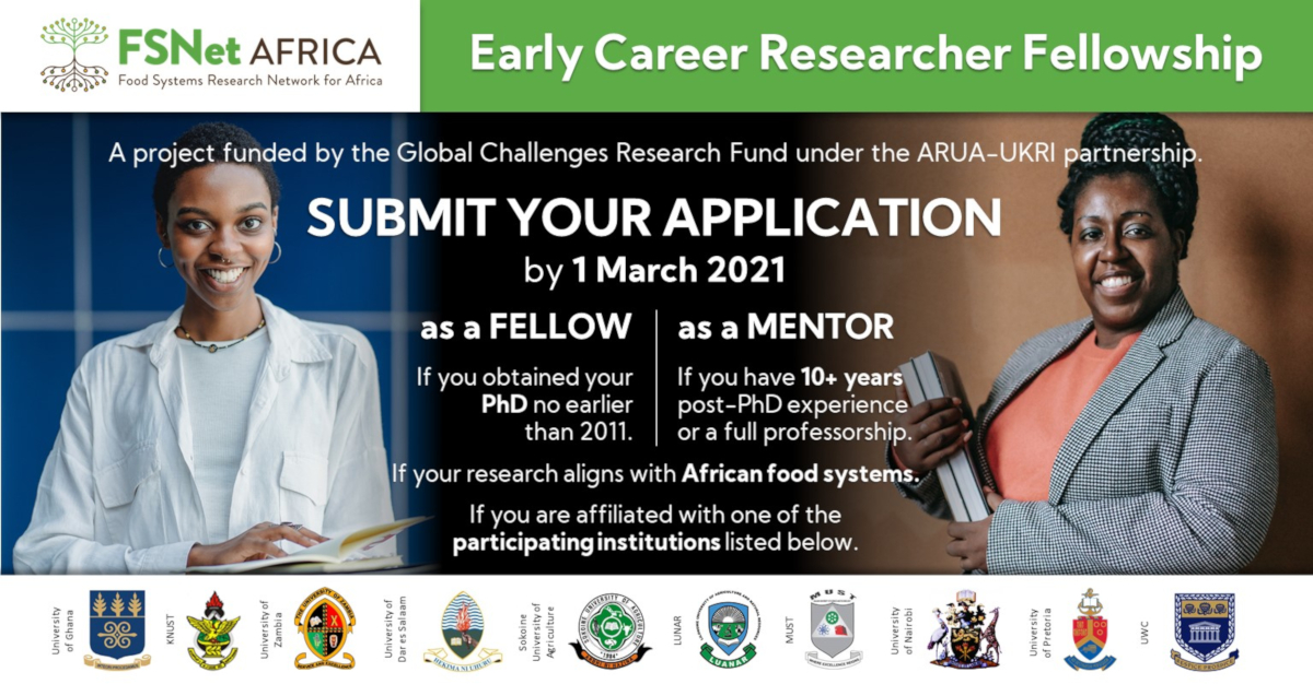 FSNet-Africa Fellowship 2021 for Early-career Researchers (up to £20,000)