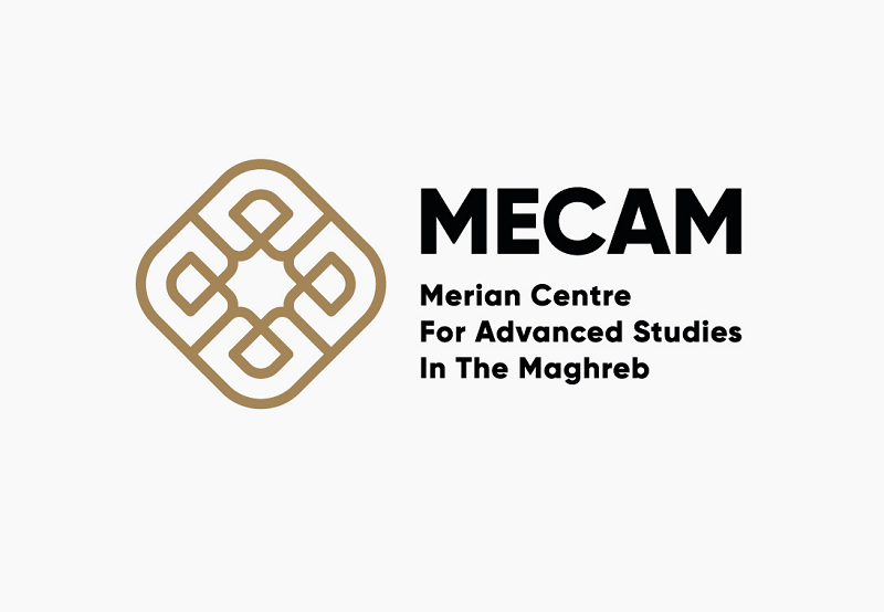 """MECAM Fellowships for IFG """"Inequality & Mobility"""" 2021 for Early-career Researchers"""