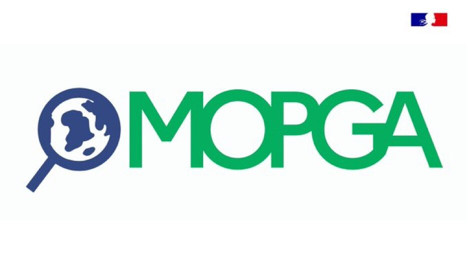 MEAE/MESRI Visiting Fellowship Program 2021 for Young Researchers (MOPGA 4)