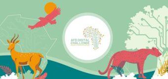 Agence Française de Développement (AFD) Digital Challenge 2021 for African Startups (€20,000 prize)