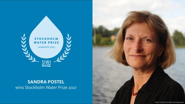 Call for Nominations: SIWI Stockholm Water Prize 2022 (1 million SEK)