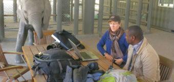 Mongabay Sue Palminteri WildTech Reporting Fellowship 2021 (Up to $5,000)