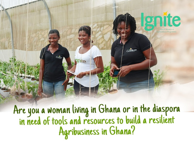 Guzakuza Ignite Program 2021 for Ghanaian Women in Agribusiness