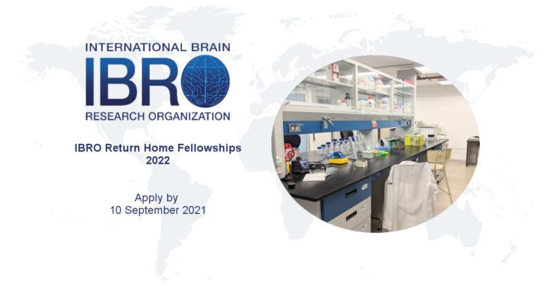 International Brain Research Organization (IBRO) Return Home Fellowships 2022 (Up to €20,000)